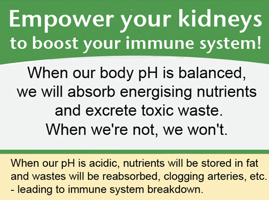 Maintaining pH Balance